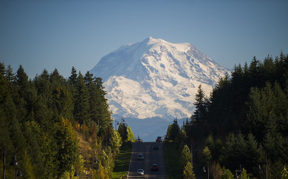 Mount Rainier in the background of a road bordered by trees.